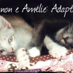 Amélie e Lennon: adaptação