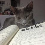 um ano de Amélie